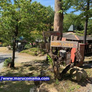 能勢温泉キャンプ場!手ぶら感覚で行けてアクセスが素晴らしい!!